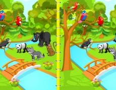 Birds vs. Animals - Hľadaj rozdiely!