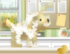 Pet Grooming - Zvieratkovský salón krásy