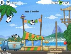 3 Pandas in Brazil - Panda-invázia do Brazílie