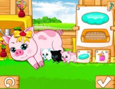 Pregnat Pig New Babies - Prasiatko má mláďatká