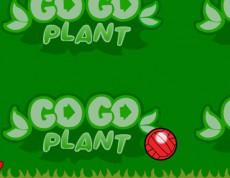 Go Go Plant - Chodiaca kvetina
