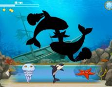 The Shadow Fishing - Nájdi správny tieň!