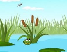 Jump Frog Jump - Skákajúce žabky